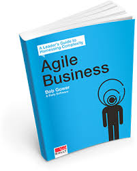 Book - Agile Business